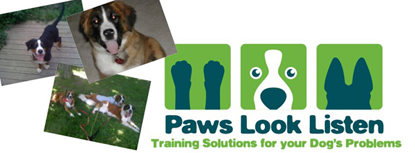 Paws Look and Listen is an animal behavioral