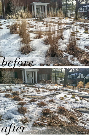 011816LANDSCAPING